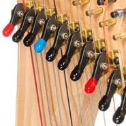 Picture of coloured lever caps on levers